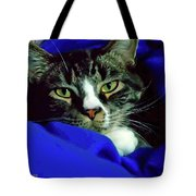 Louis And The Snuggy Tote Bag
