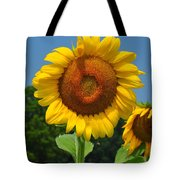 Louisa, Va. Sunflower 6 Tote Bag