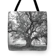 Louisiana Dreamin' Monochrome Tote Bag