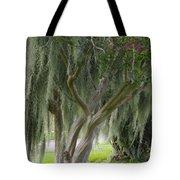 Louisiana Moodiness Tote Bag