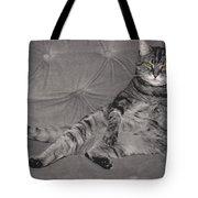 Lounge Cat Tote Bag