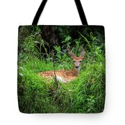 Lounging Fawn Tote Bag