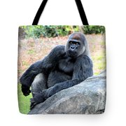 Lounging On This Rock Tote Bag