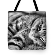 Lounging Time Tote Bag