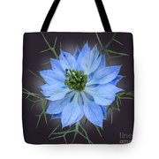 Love In A Mist Black With Light Tote Bag