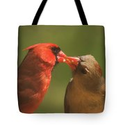 Love Is In The Air Cardinals Square Tote Bag