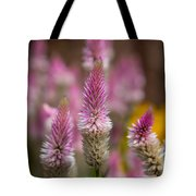 Love Lavender.... Tote Bag