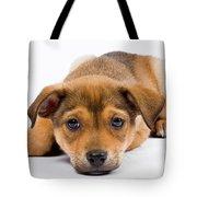 Love Me Puppy Tote Bag