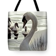 Love Of Mother Swan Tote Bag