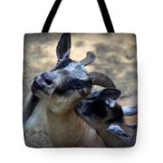 Love On A Farm Tote Bag by Karen Wiles