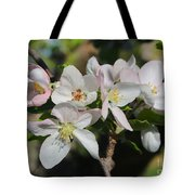 Lovely Apple Blossoms Tote Bag