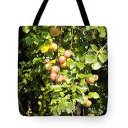 Lovely Apples On The Tree Tote Bag