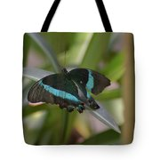 Lovely Blue And Black Emerald Swallowtail Buterfly Tote Bag