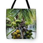 Lovely Bunch Of Coconuts Tote Bag