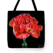 Lovely Carnation 12718-1 Tote Bag