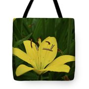 Lovely Close Up Of A Yellow Lily In Full Bloom Tote Bag