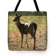 Lovely Deer Tote Bag
