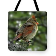 Lovely Female Cardinal Tote Bag