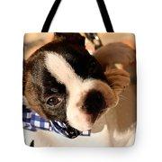 Lovely Handbag Tote Bag