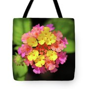Lovely Lantana Tote Bag