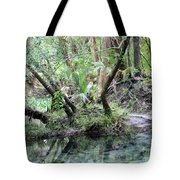 Lovely Lithia Springs Tote Bag