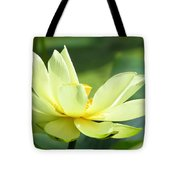 Lovely Lotus Tote Bag