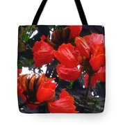 African Tulips Tote Bag