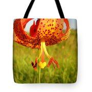 Lovely Orange Spotted Tiger Lily Tote Bag