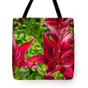 Lovely Red Lilies Tote Bag