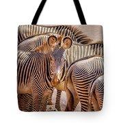 Lovely Stripes  7589 Tote Bag