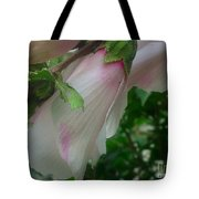 Lovely White And Pink Flowers Tote Bag
