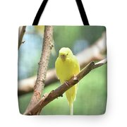 Lovely Yellow Budgie Parakeet In The Wild Tote Bag