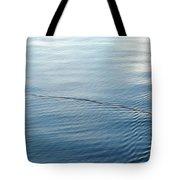 Lover's Spat Tote Bag