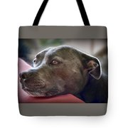 Loving Pitbull Eyes Tote Bag