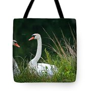 Loving Swans Tote Bag by Clayton Bruster