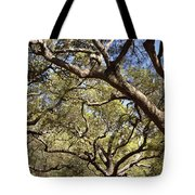 Low Angle View Of Trees In A Park Tote Bag