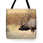 Low Approach Tote Bag