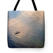Low Flight Tote Bag