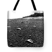 Low Tide At Linwood's House 26 Tote Bag