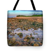 Low Tide At Montauk Point Tote Bag