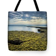 Low Tide At Swami's Tote Bag