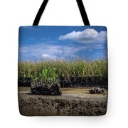 Low Tide Iv Tote Bag