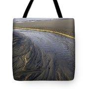 Low Tide Morning Tote Bag