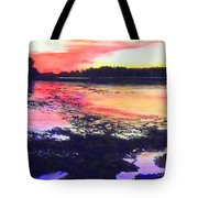 Low Tide On The Penobscot River Tote Bag
