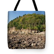 Low Tide Panorama Tote Bag
