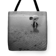 Low Tide Pool Two  Tote Bag