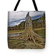 Low Water Tote Bag by Scott Pellegrin