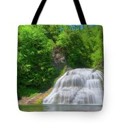Lower Falls 0485 Tote Bag