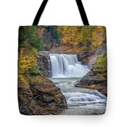 Lower Falls In Autumn Tote Bag