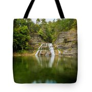 Lower Falls Of Enfield Glen Early Autumn Tote Bag